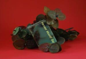Natural neem eucalyptus soap bar
